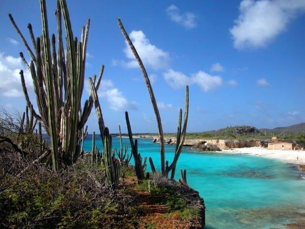Bonaire 17