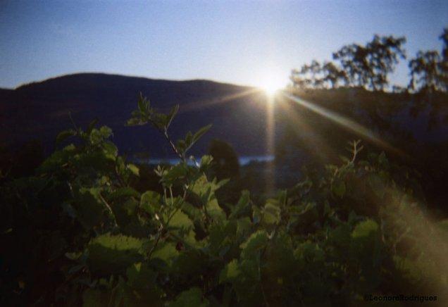 Day 245 - Sunset over Hudson