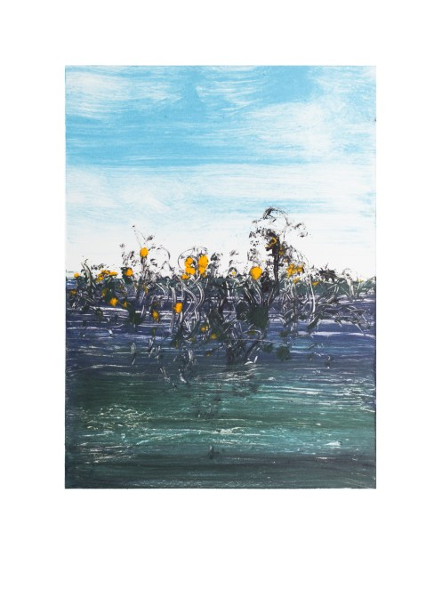 Monoprint (Gorse Heather)