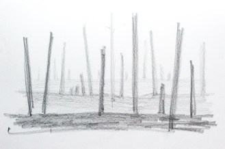 Development sketch
