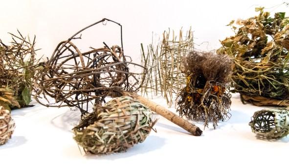 Ross Belton Nest 3