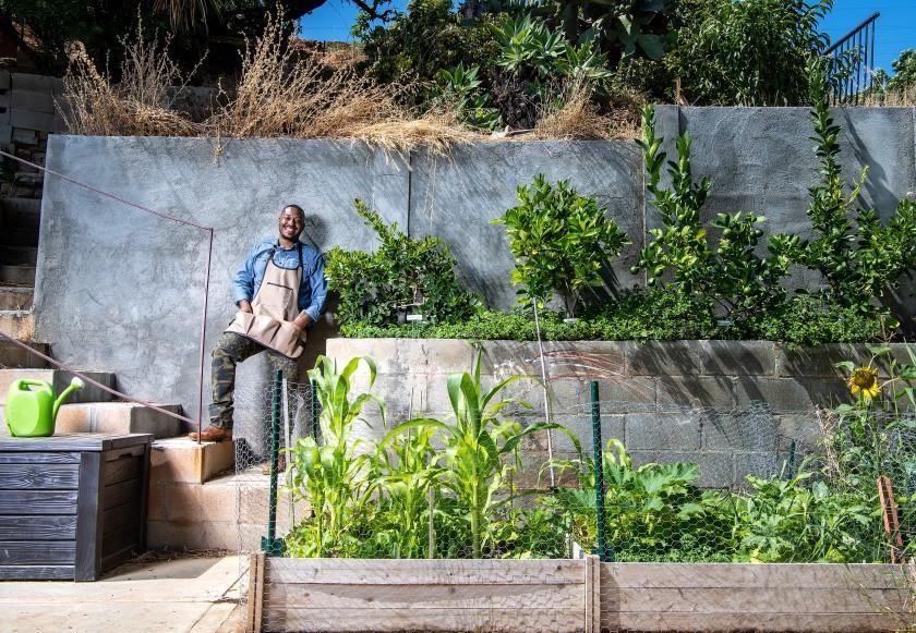 This Modern Farmer Turned His Concrete Backyard Into A Food Forest Modern Farmer