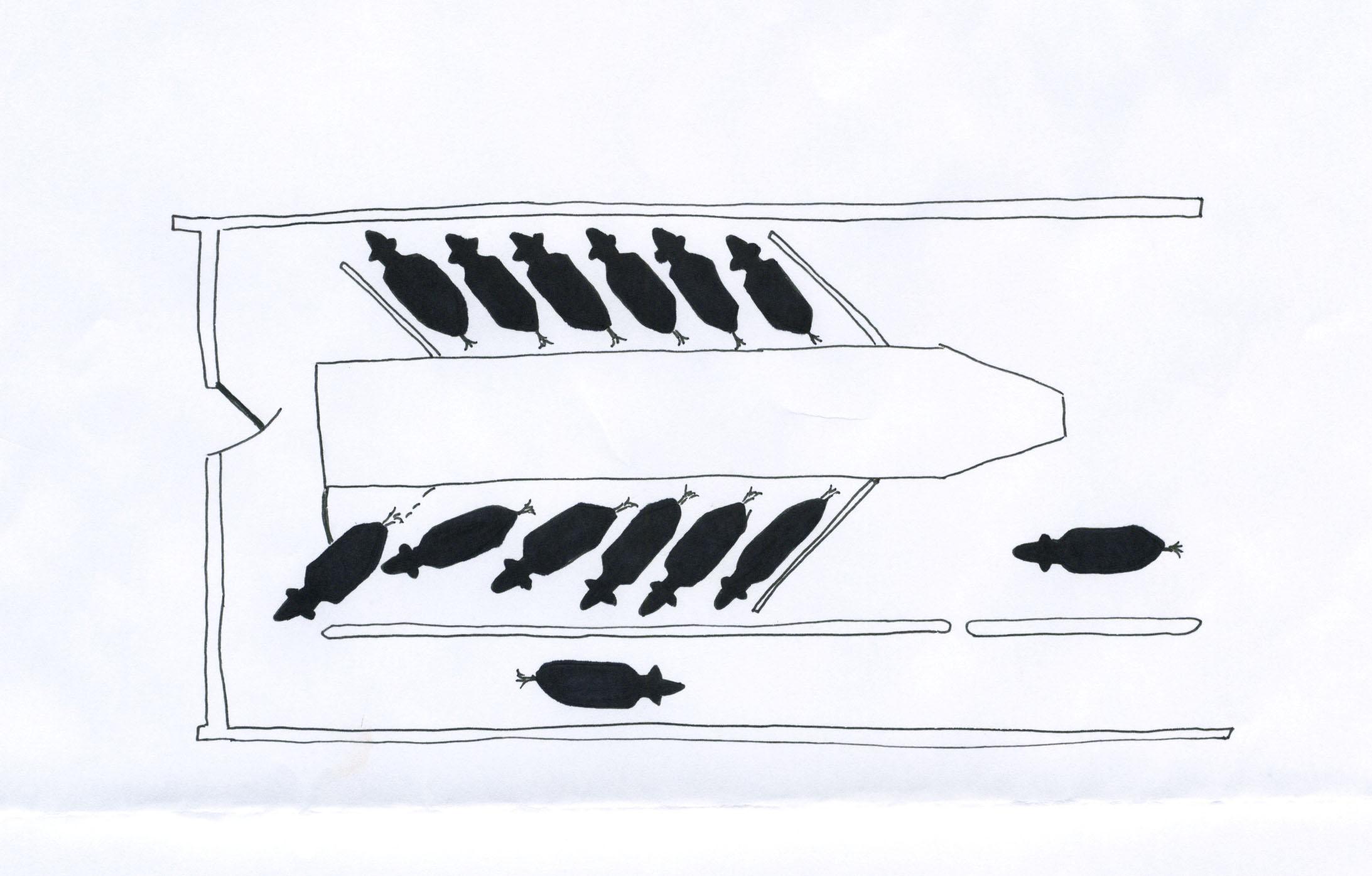 Diagram Of Herringbone Milking