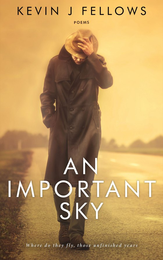 An Important Sky - book cover