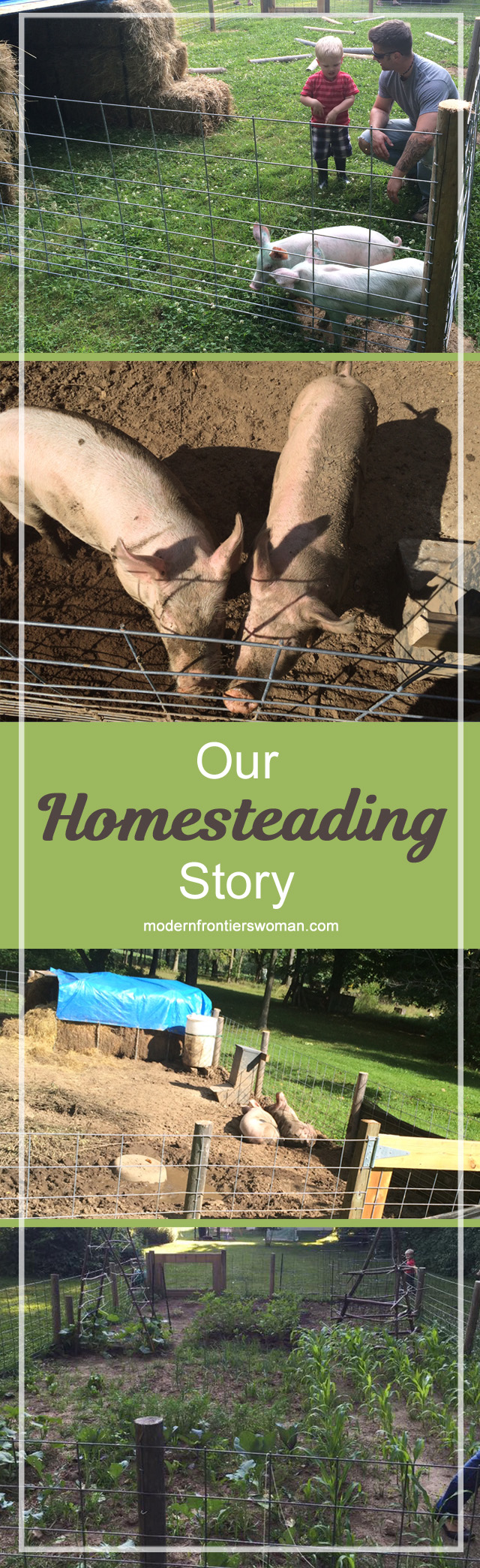 Our Homesteading Story