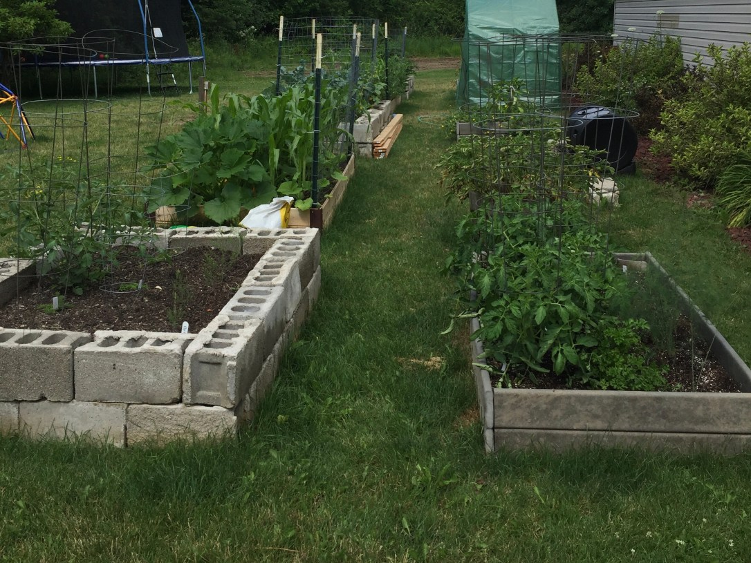 Raised Bed Vegetable Garden Potager Style