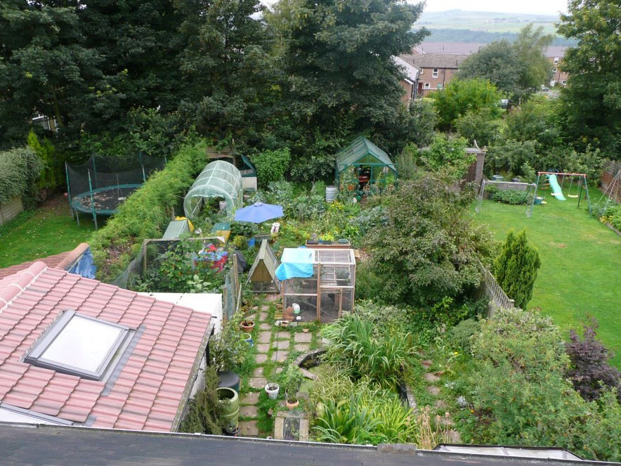 Permaculture design in backyard urban homestead farm