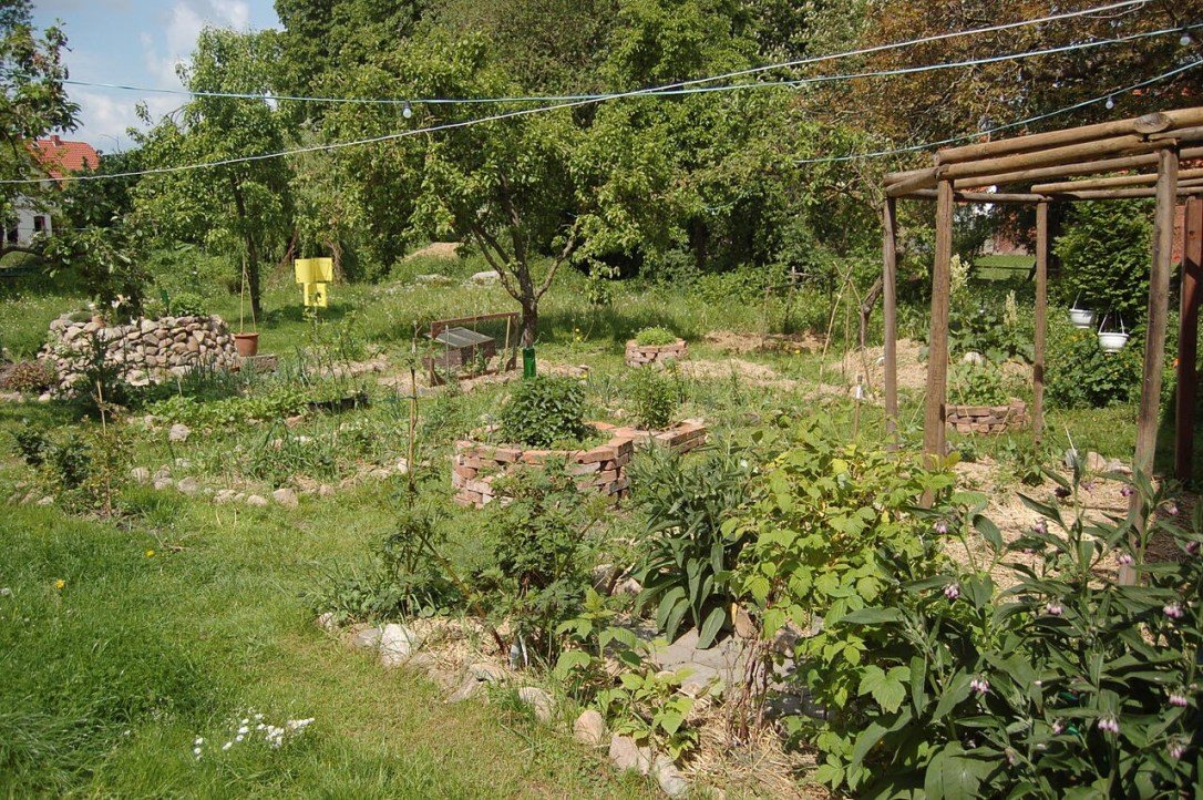 raised bed vegetable garden with herb spiral