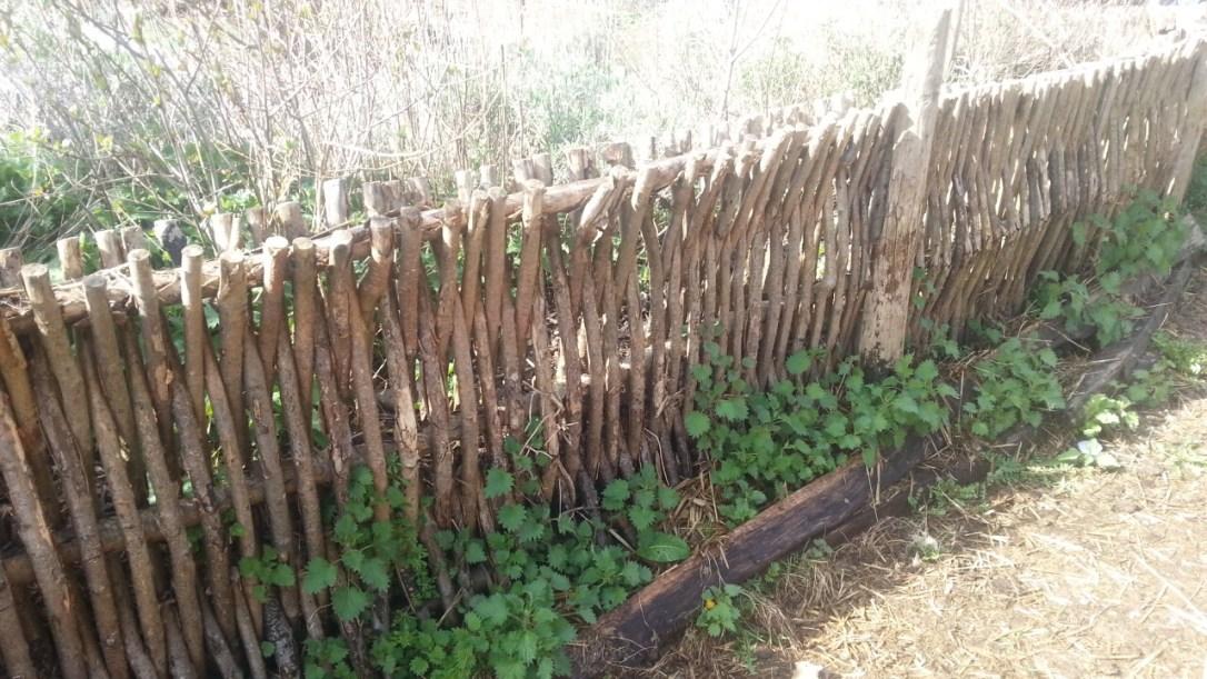 woven wattle wood fence