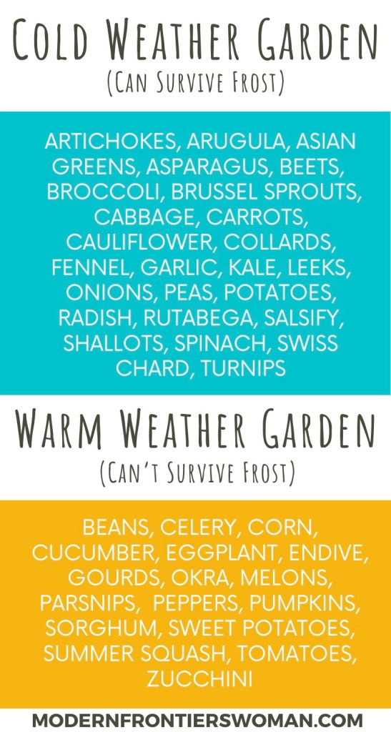 Cold vs Warm Weather Garden Crops