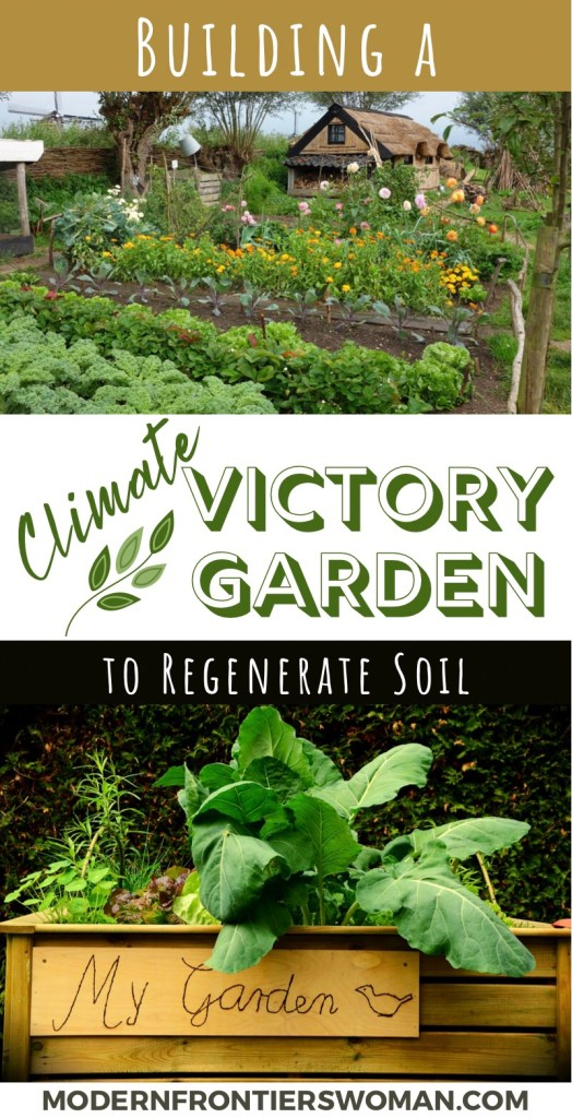 Building a Climate Victory Garden to Regenerate Soil