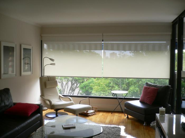 Roller Shades Living Room