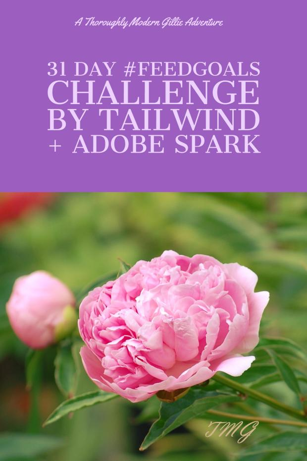 feedgoals challenge by Tailwind & Adobe Spark, get 31 days of IG topics, www.moderngillie.com