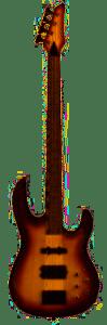 carvin bass guitar