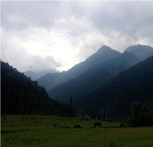 Pahalgam-Aru-valley