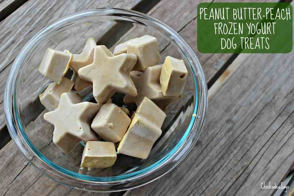 Peanut Butter Peach Frozen Yogurt Dog Treats