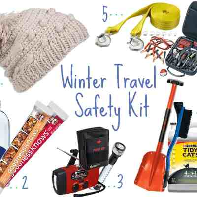 Winter Travel Safety Kit for Humans and Their Pets