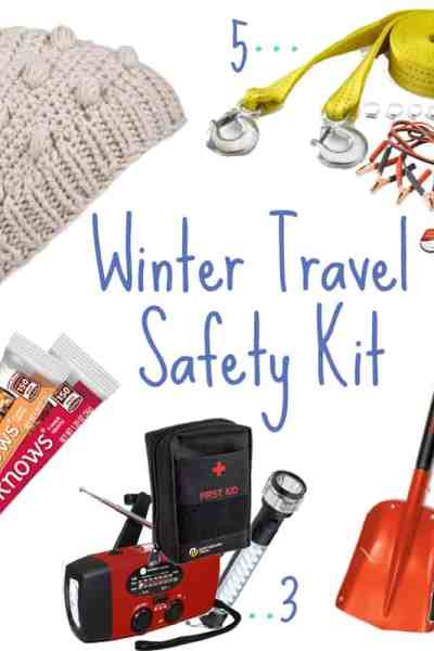 Winter Safety Travel Kit for Humans and their pets
