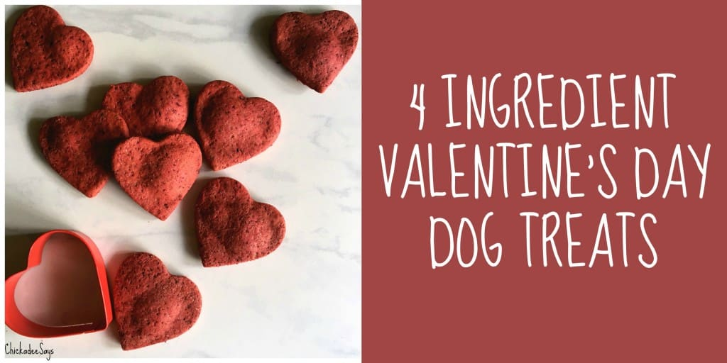 4 Ingredient Valentine's Day Dog Treats Recipe
