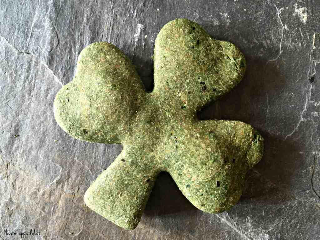 St Patrick's Day Dog Treats Recipe Shamrock