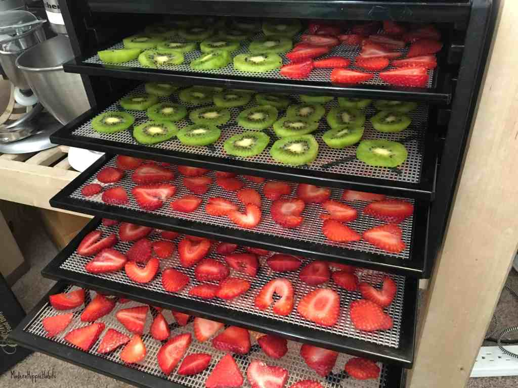 Dehydrator Basics Fruit