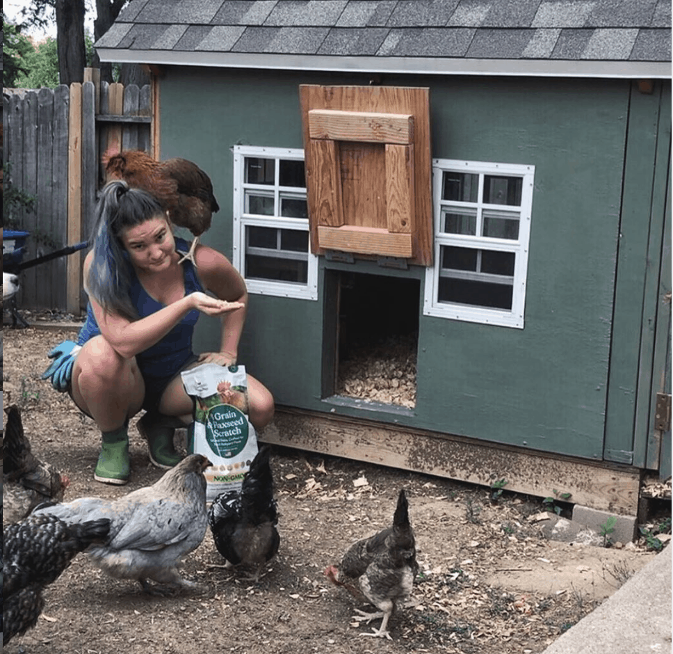 Sustainable Backyard Chickens