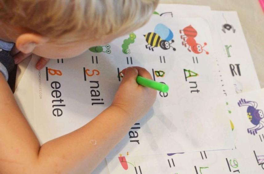 Bug Theme Preschool Worksheets