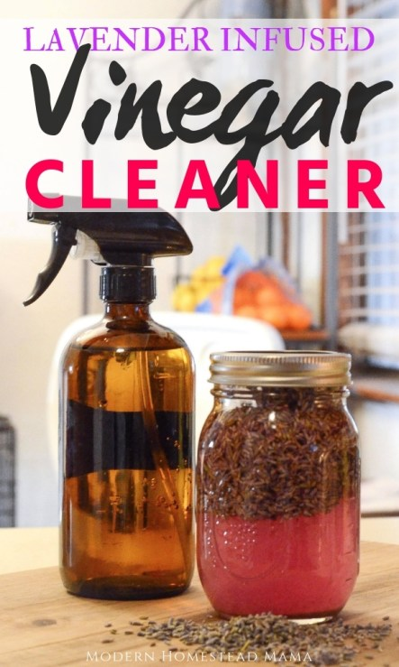 DIY Lavender Infused Vinegar Cleaner