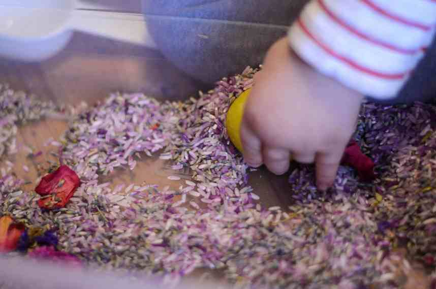Toddler Playing in Lavender Sensory Bin