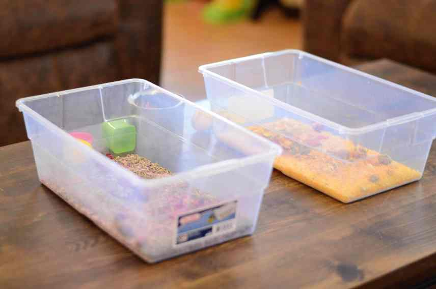 Floral Sensory Bins on Table
