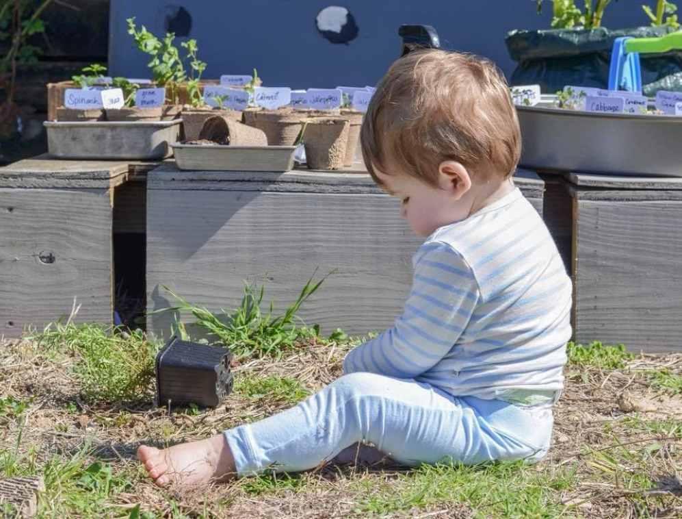 Toddler Planting Seeds & Gardening