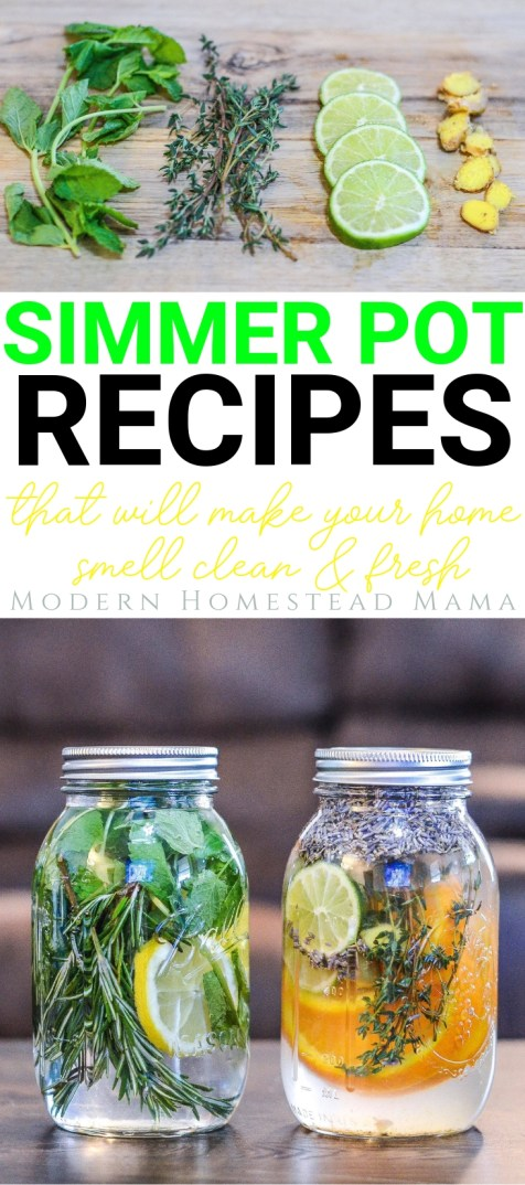 Simmer Pot Recipes That Will Make Your Home Smell Clean & Fresh | Modern Homestead Mama