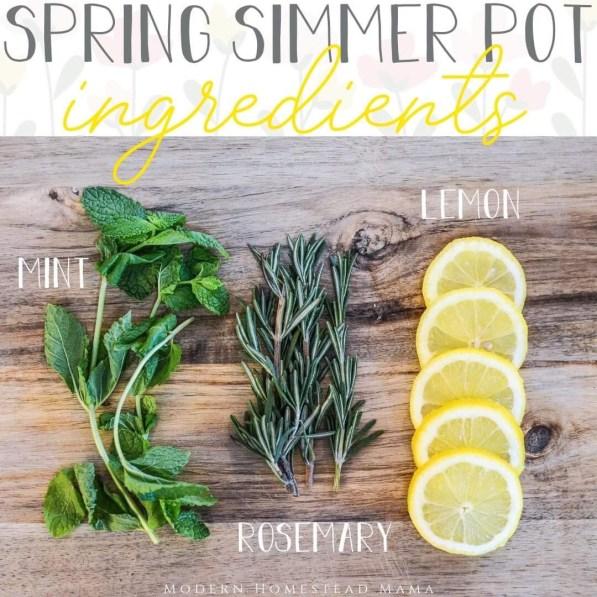 Simmer Pot Recipes for Spring - Lemon Rosemary Mint