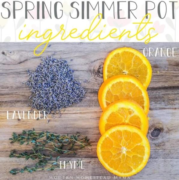 Simmer Pot Recipes for Spring - Orange Thyme Lavender