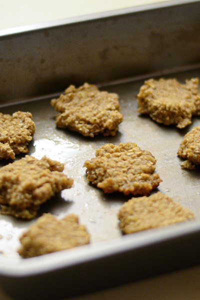 2 Ingredient Oatmeal Banana Cookies for Toddlers | Modern Homestead Mama