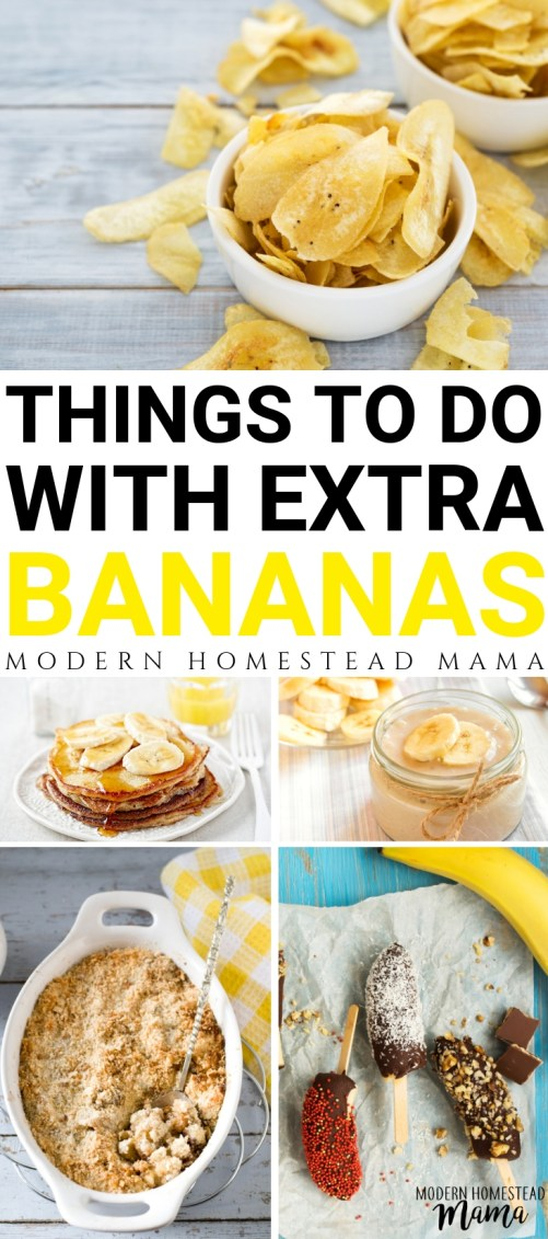 What To Do With Bananas | Modern Homestead Mama