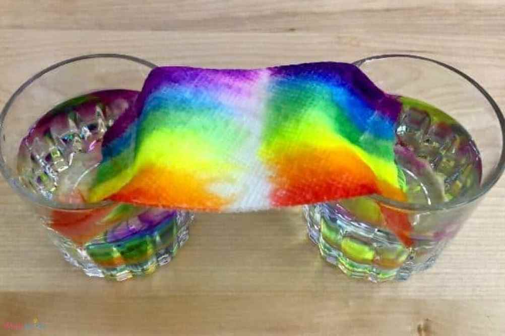 Grow a Rainbow Paper Towel Science Experiment