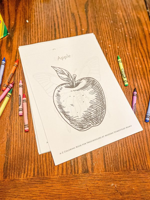 A-Z Coloring Book for Preschoolers Apple