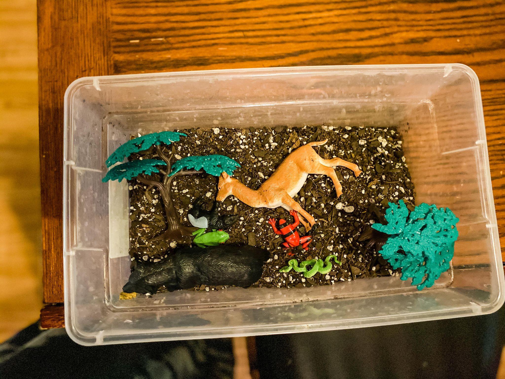Forest Sensory Bin Activity for Preschoolers