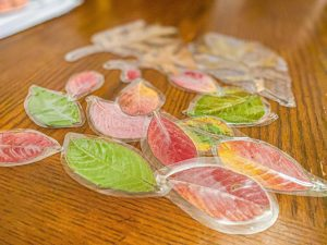 Laminated Fall Leaves Craft for Kids