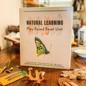 Natural Learning Play-Based Reset Unit | Modern Homestead Mama