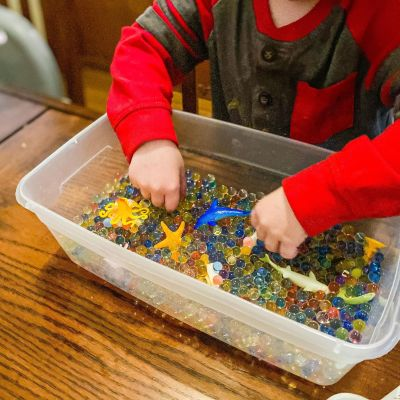 Ocean Sensory Bin Activity for Preschoolers