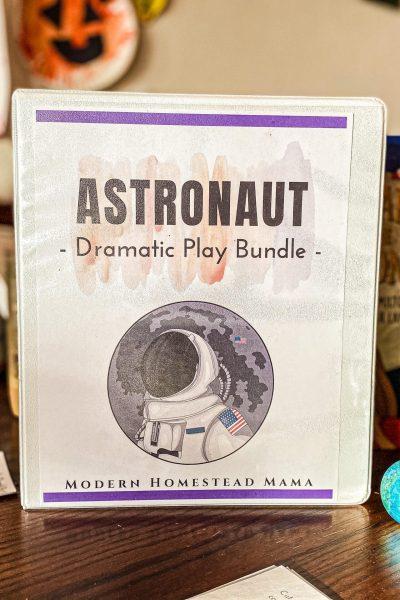 Astronaut Dramatic Play Bundle
