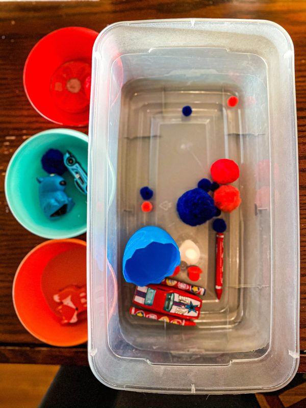 Color Sorting Toddler Activity Bin