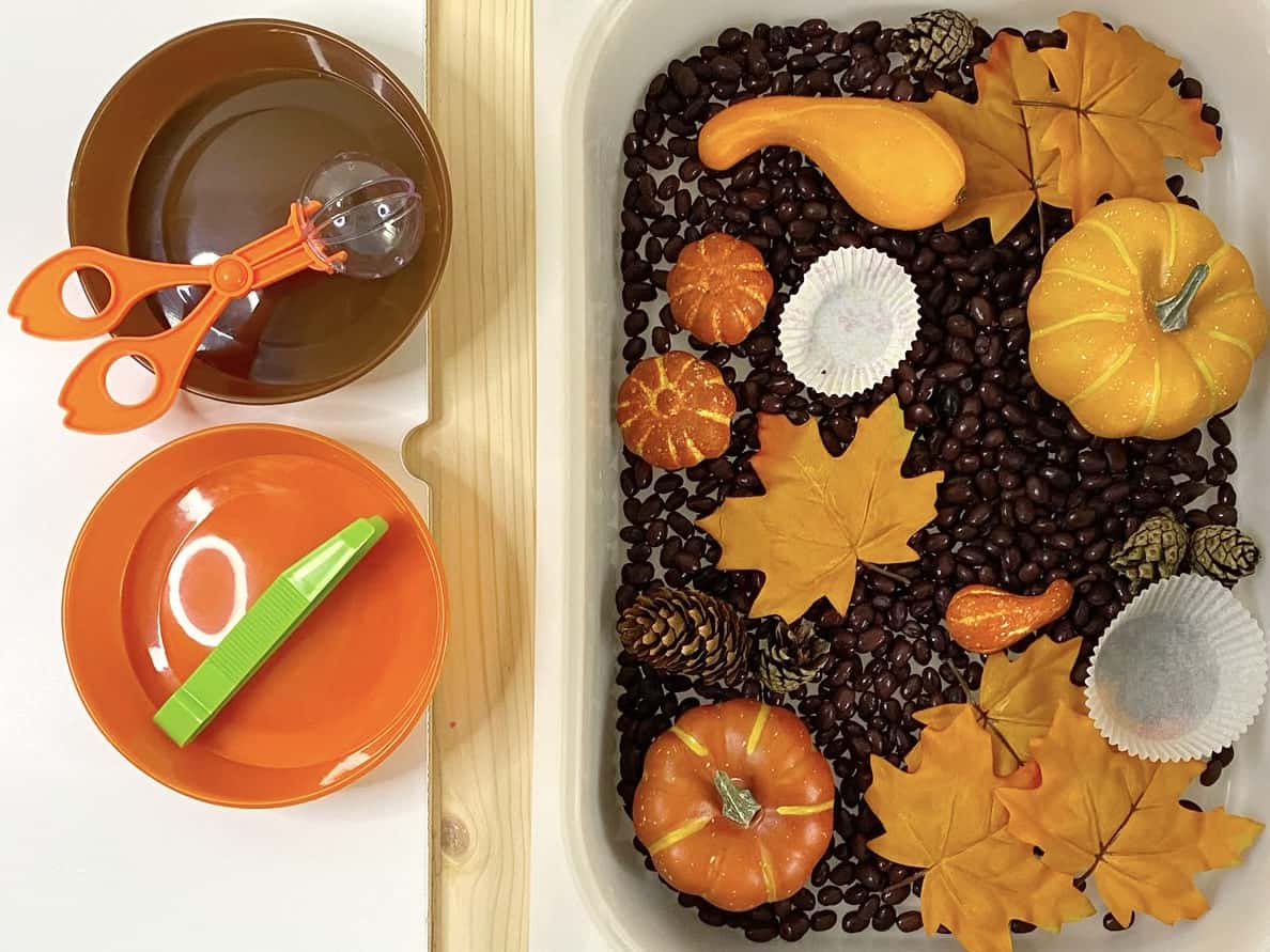 Fall Sensory Bin with Beans