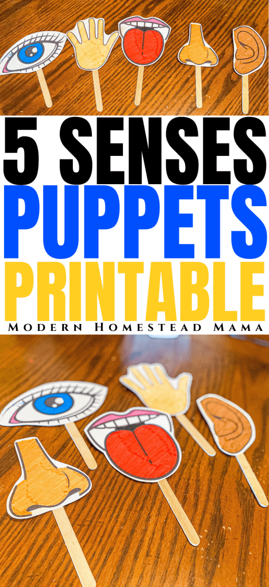 Five Senses Printable Puppets | Modern Homestead Mama
