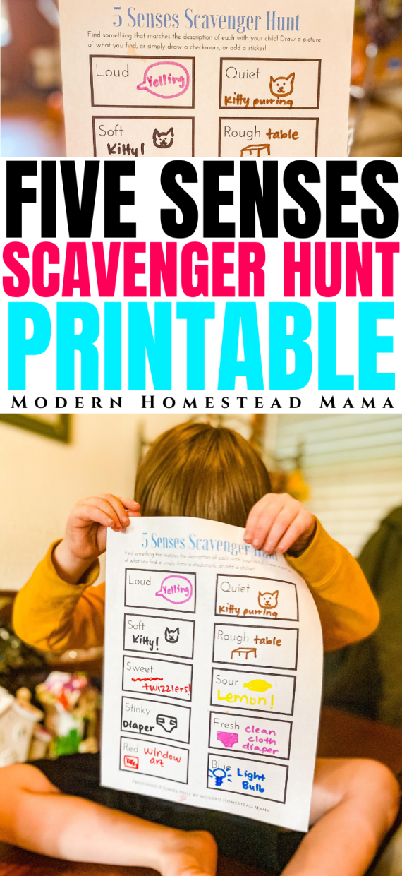 Five Senses Scavenger Hunt Printable for Kids | Modern Homestead Mama