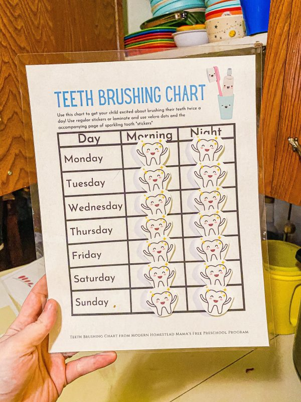 Teeth Brushing Chart for Kids
