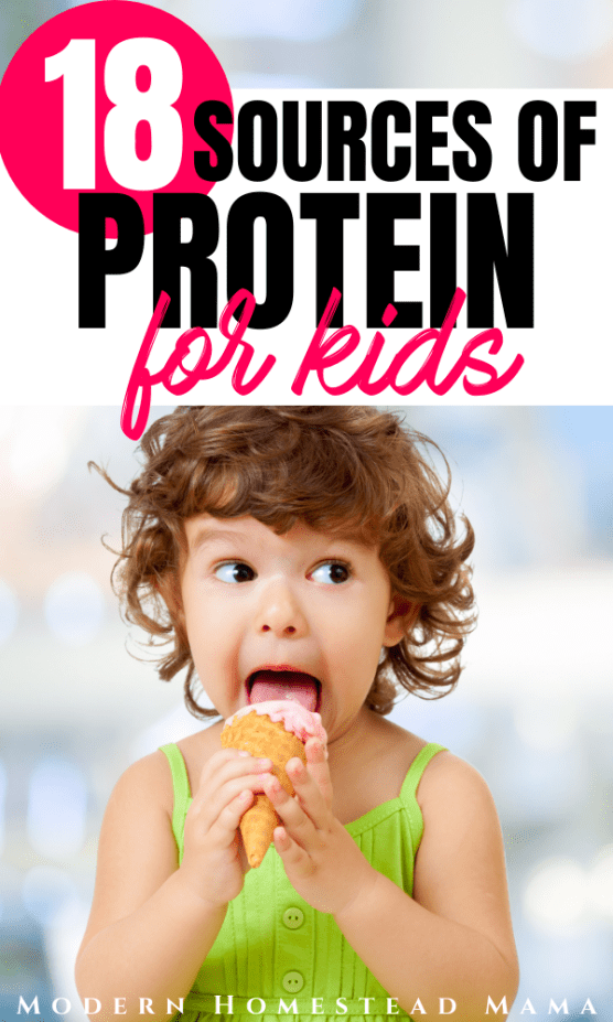 18 Sources of Protein for Kids | Modern Homestead Mama