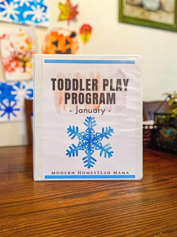 January Toddler Play Program